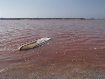 セネガルにあるピンクの湖「ラックローズ」をご紹介